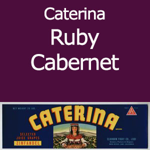 Caterina Ruby Cabernet Clement Hills AVA Base of Sierra Foothills