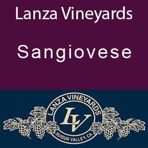 Lanza Vineyards Sangiovese Brunello Clone