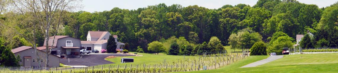 Maryland-winery-Harford-Vineyard-rolling hills