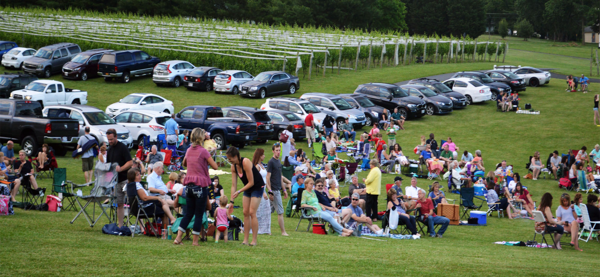 Live-Music-Wine-Events-Harford-County